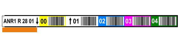 ONE2ID Regaletiketten mit Farbcodierung