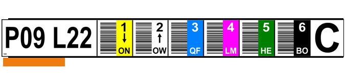 ONE2ID Vertikaler Barcode Farbcodierung Regaletiketten